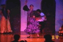 El Cid Flamenco Show
